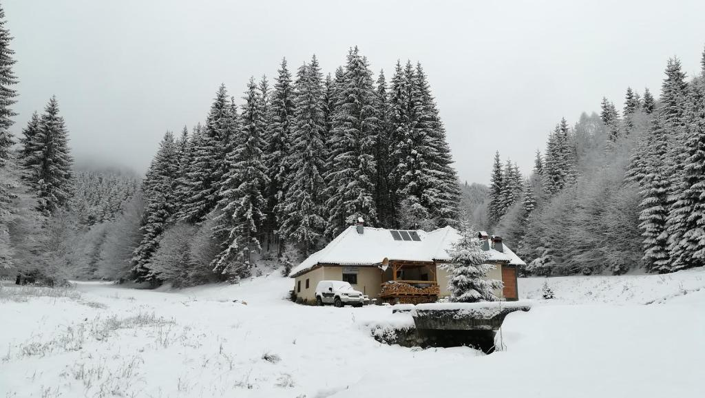 Cabana Pietricica during the winter
