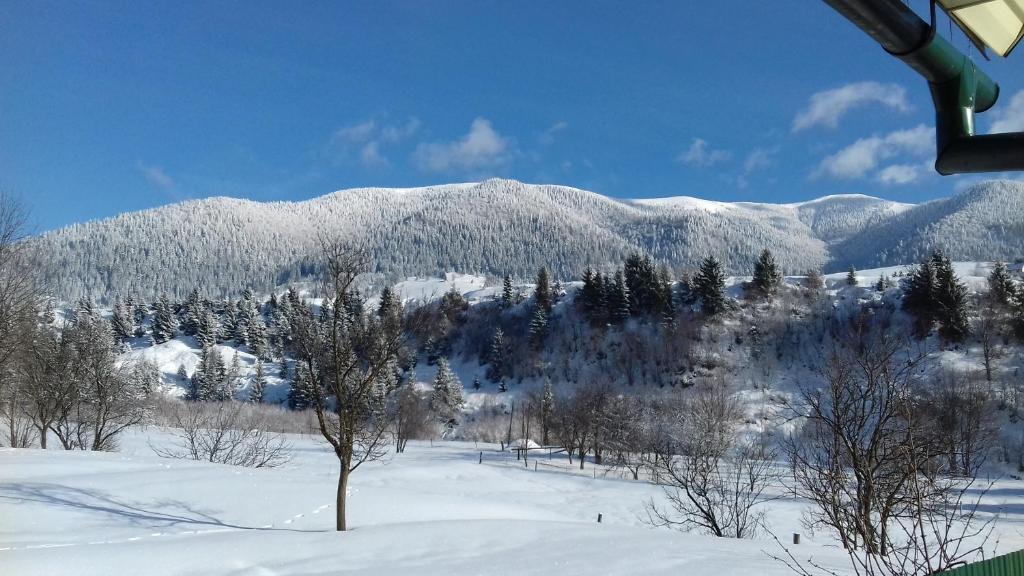 Sadyba u Anastasijky v zimě