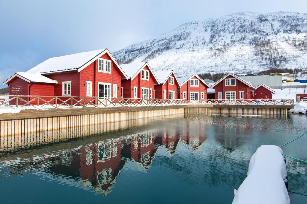 Treff nye folk i Norge