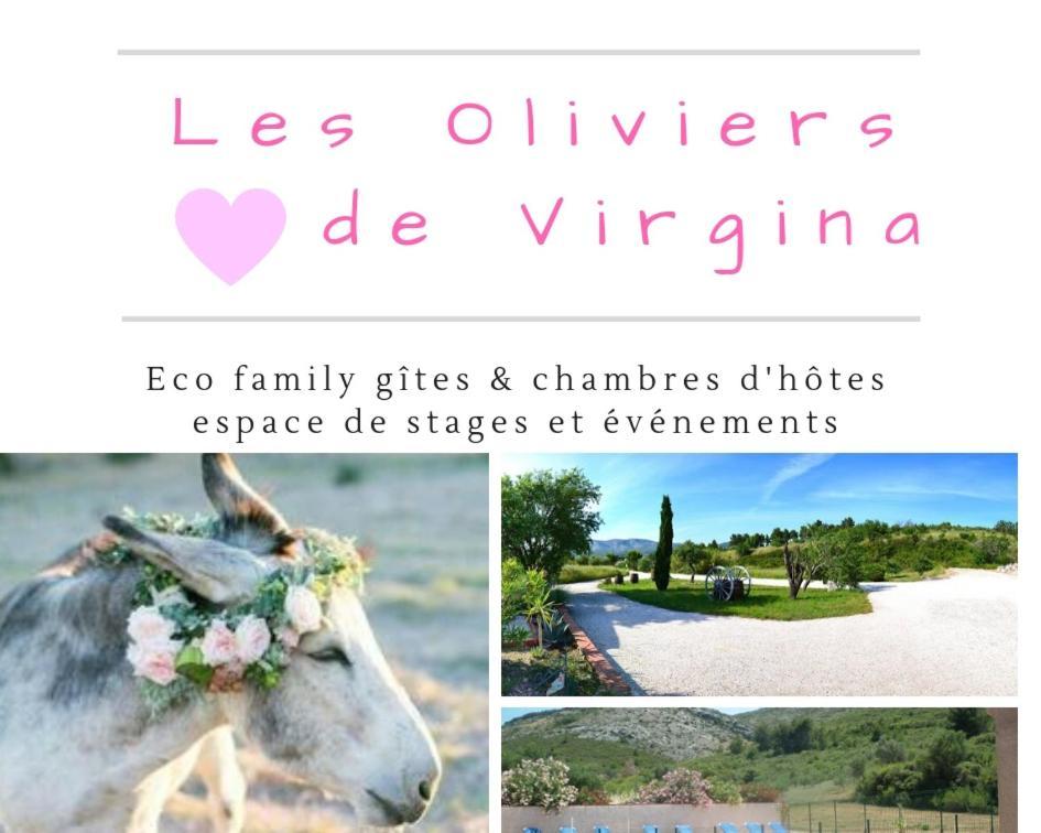 Eco Family Gîtes & Rooms (Francia Cases-de-Pène) - Booking.com