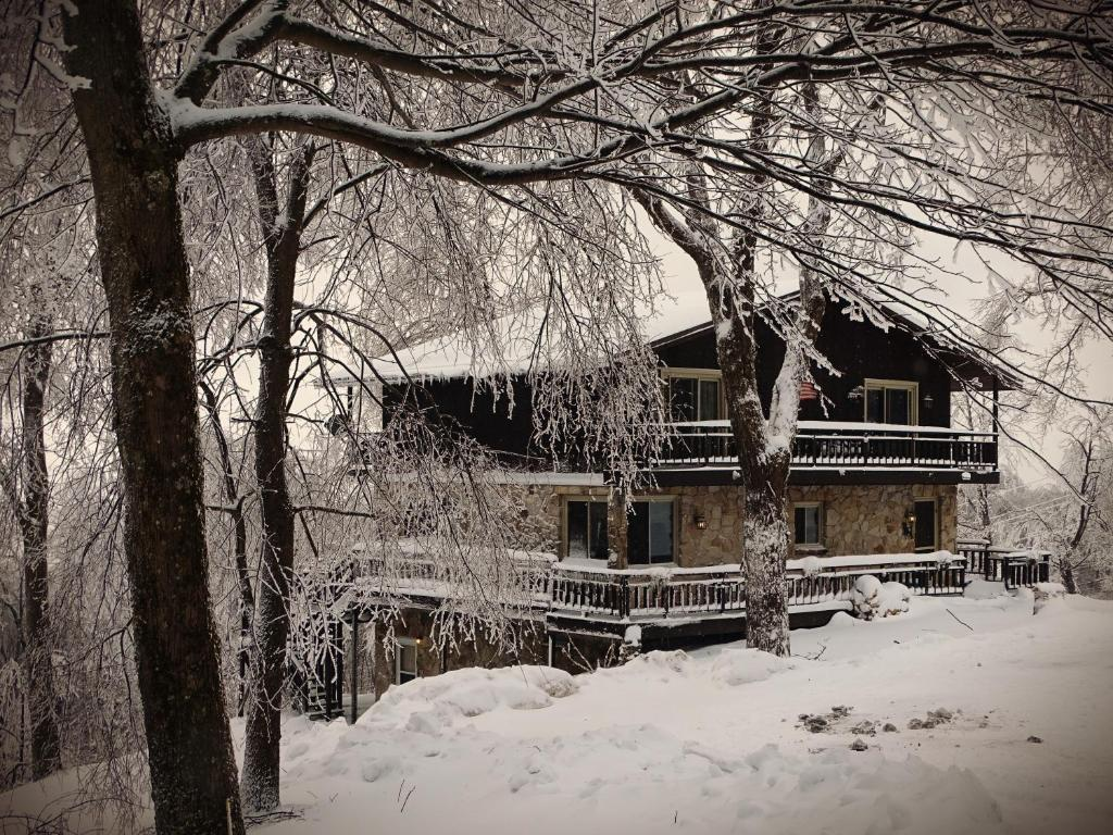 Alpine Retreat Bed and Breakfast during the winter