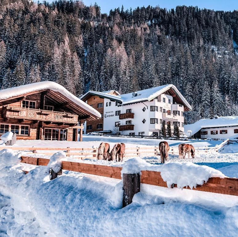 Hotel Lärchenhof during the winter
