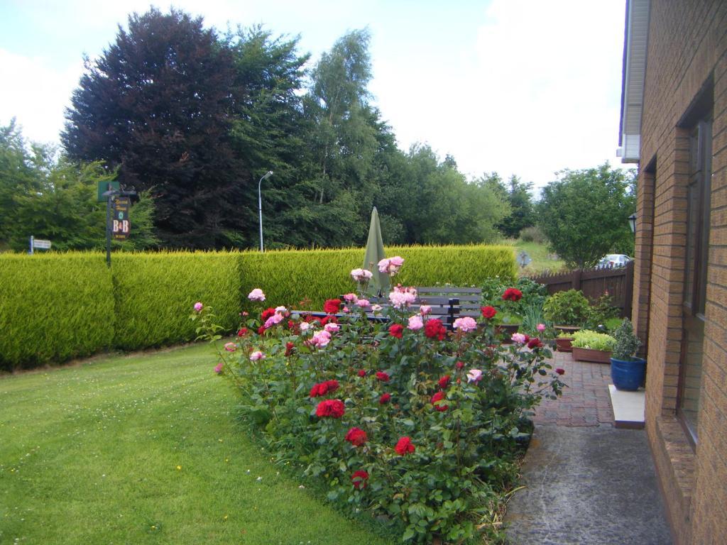 Bed & Breakfast Mornington House, Mullingar - tonyshirley.co.uk