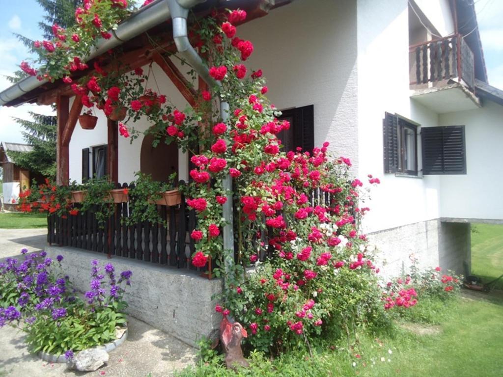 House Ilija Hodak