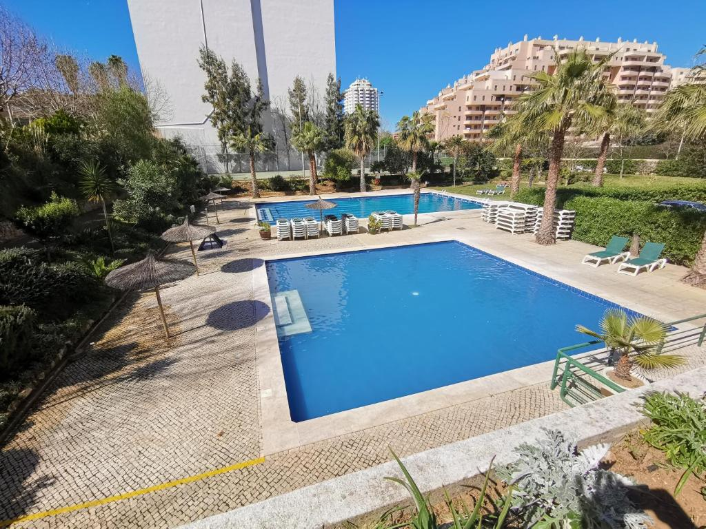 The swimming pool at or near Apartment Jardins da Rocha 22