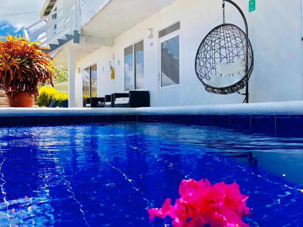 A piscina localizada em Posada Lkjay Providencia Isla ou nos arredores