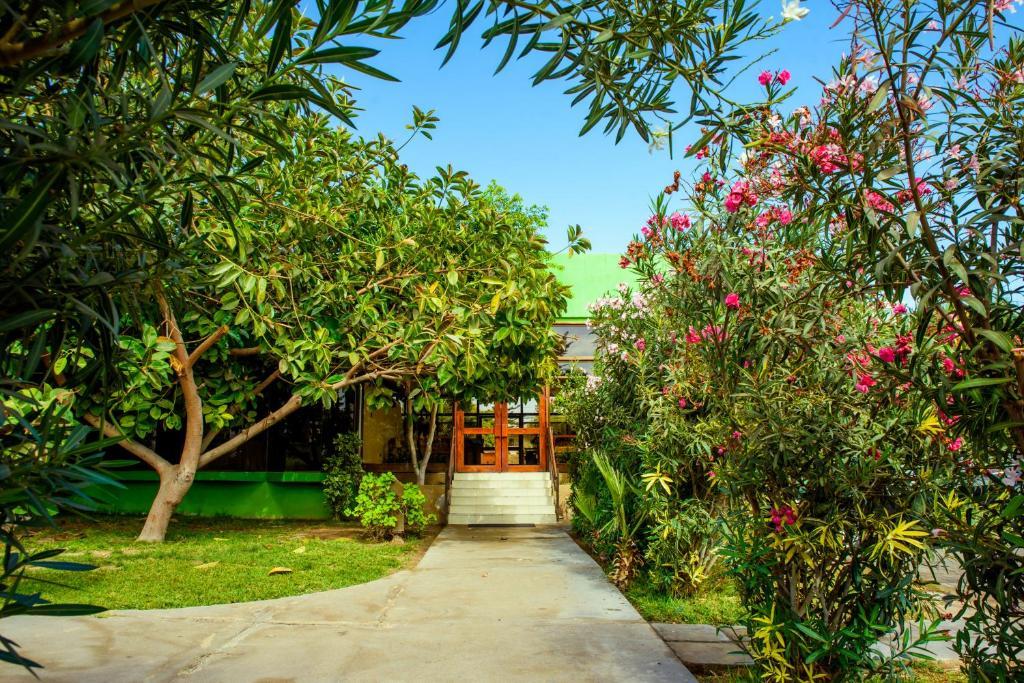 Jardín al aire libre en Hotel del Valle Azapa