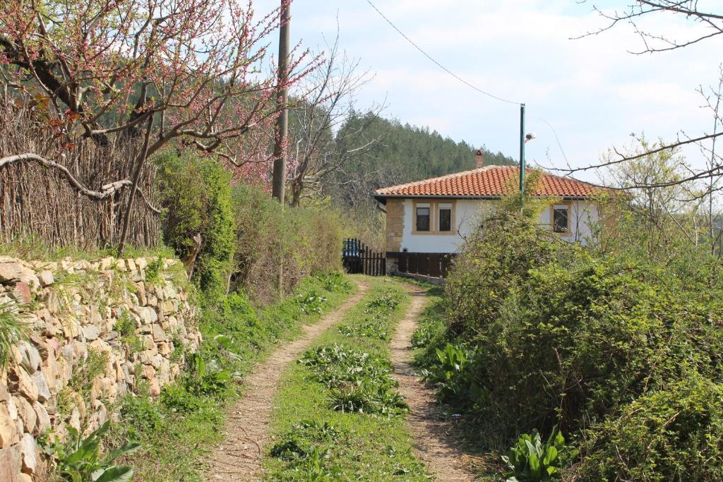 Old Stead House Krdzhali Obnoveni Ceni 2020