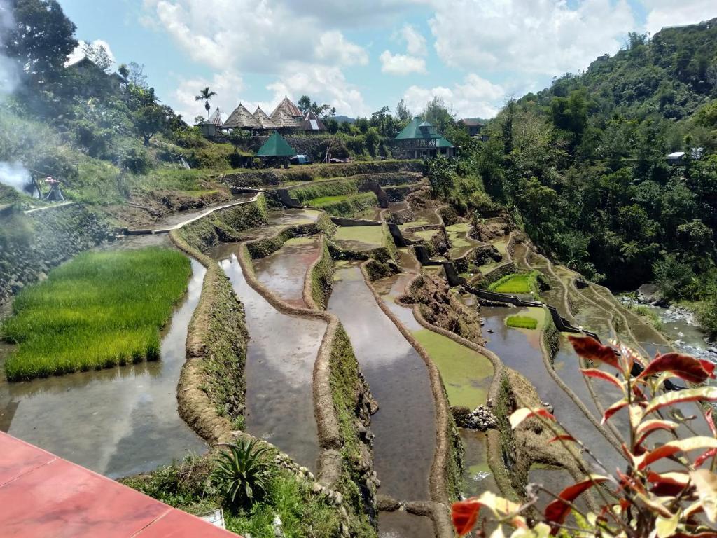 Vue panoramique sur l'établissement Bogah Homestay