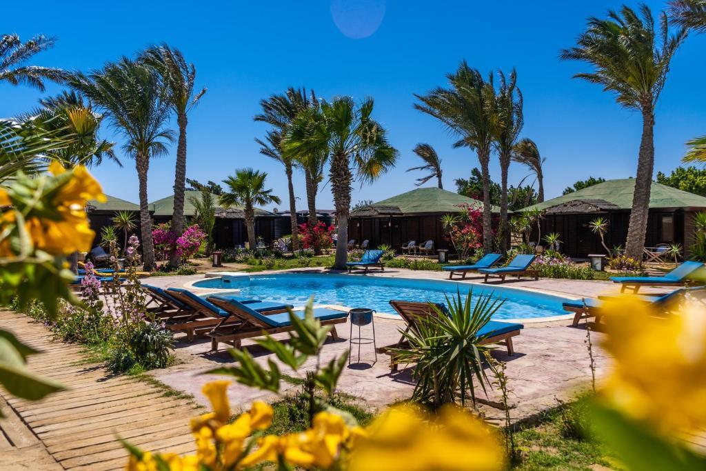 בריכת השחייה שנמצאת ב-Abu Dabbab Lodge או באזור