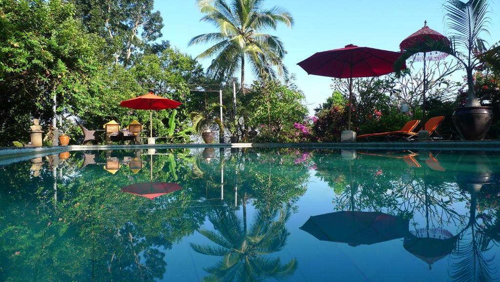 7 انشطة سياحية يمكن القيام بها في قرية تيرتا جانجا في بالي