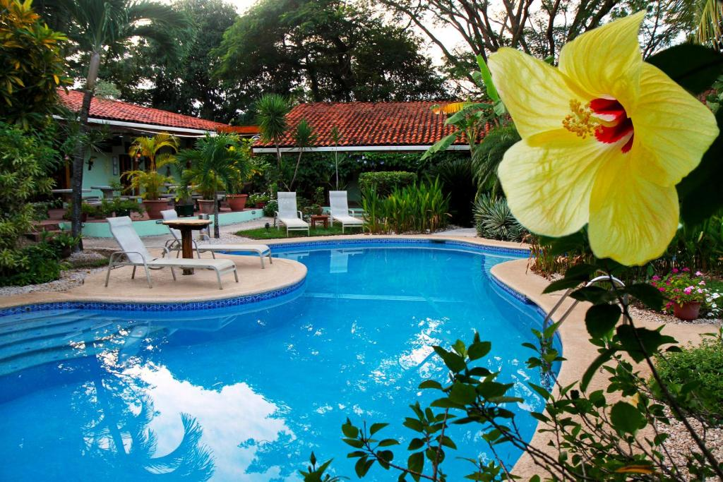 The swimming pool at or near Hotel Bula Bula