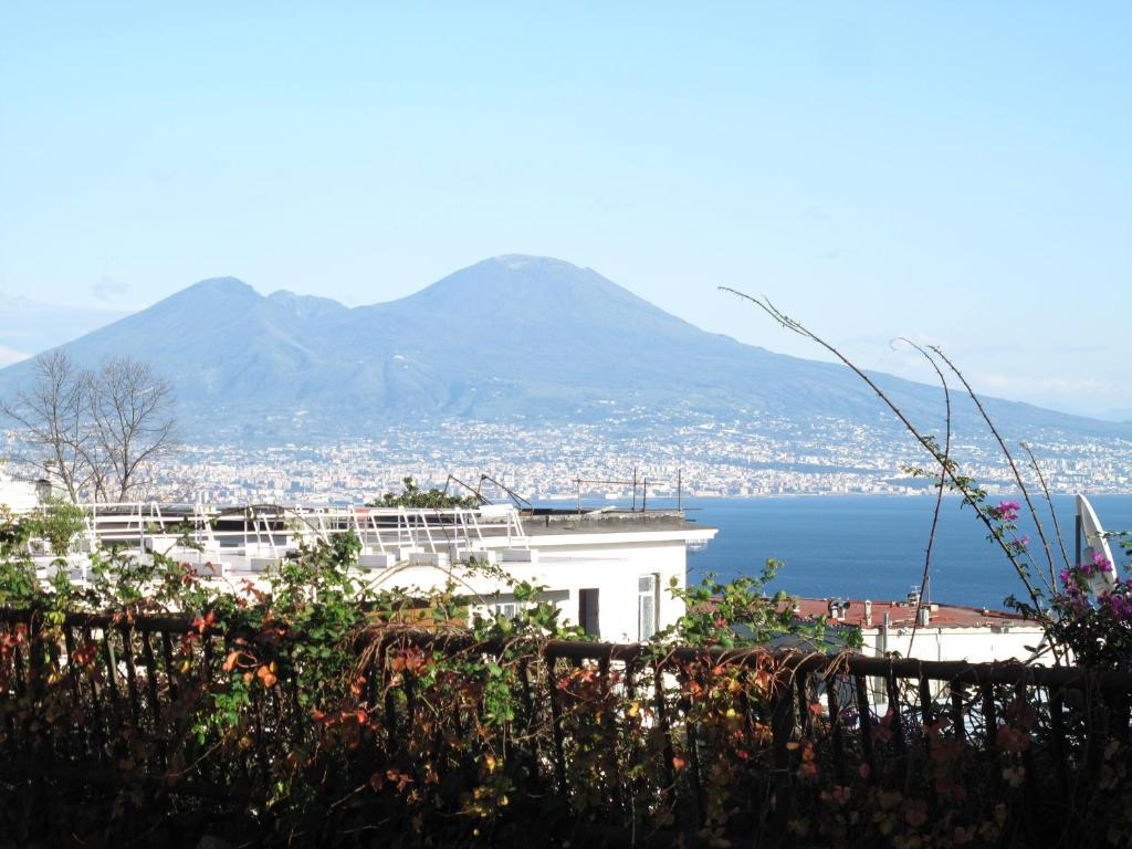 Monocamera Studette Via Scipione Capece Napoli Prezzi