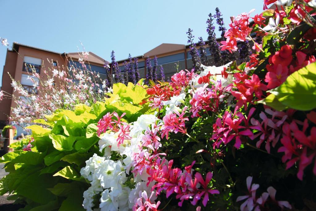 Resort Les Terrasses De Borda Dax France Booking Com