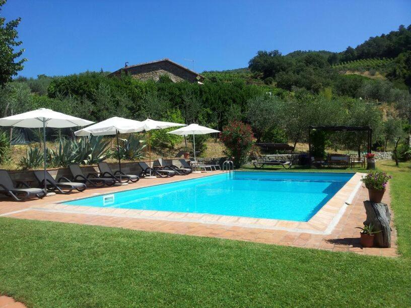 The swimming pool at or near Agriturismo Poggio all'Olmo