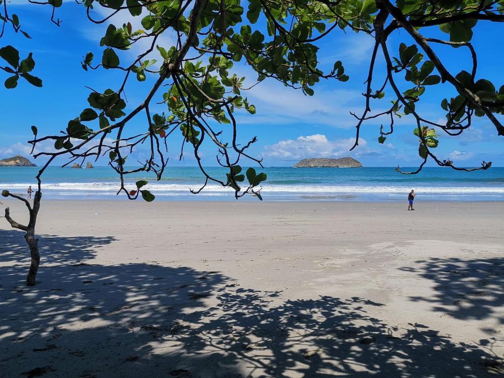 Hotel Jungle Beach Manuel Antonio