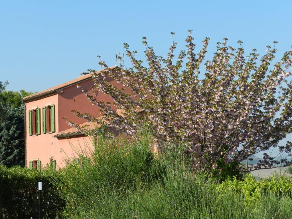 Farm Stay A3passi Ancona Italy Booking Com