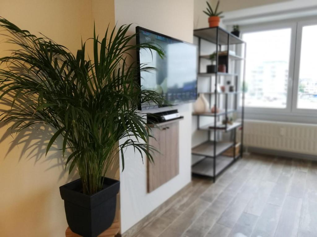 Appartement Oostende Vlak Aan Zee Belgien Ostende Booking Com