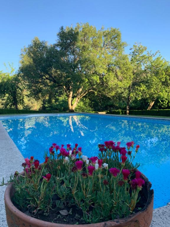The swimming pool at or near Villa Margaridi