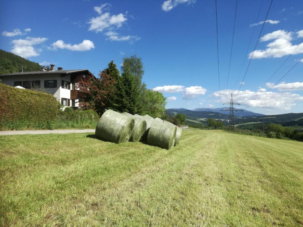A garden outside Austrian with a Twist