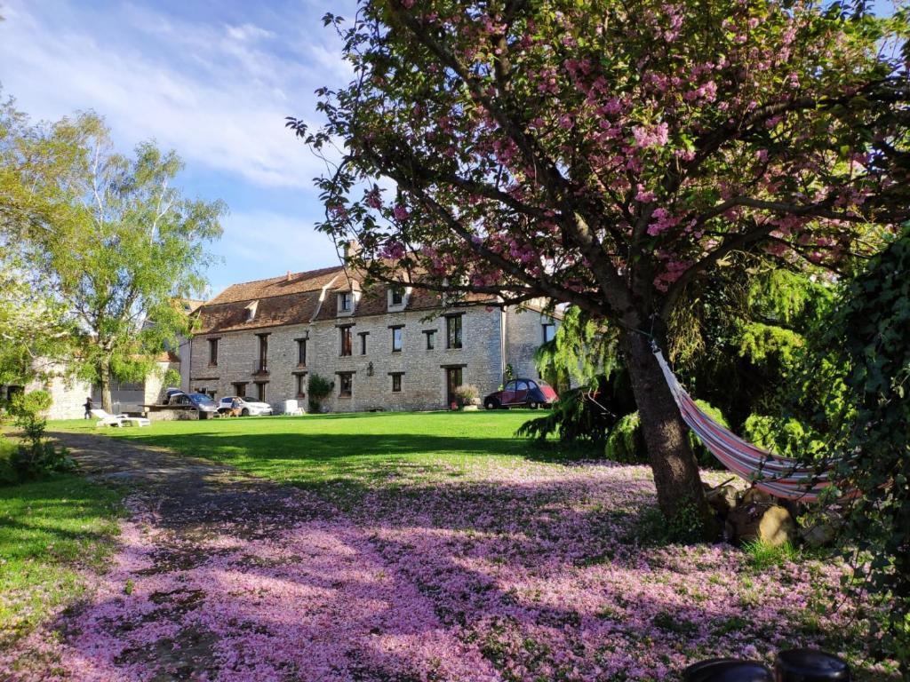 Vie Et Veranda Thoiry la fauconnerie du roy, montainville – tarifs 2020