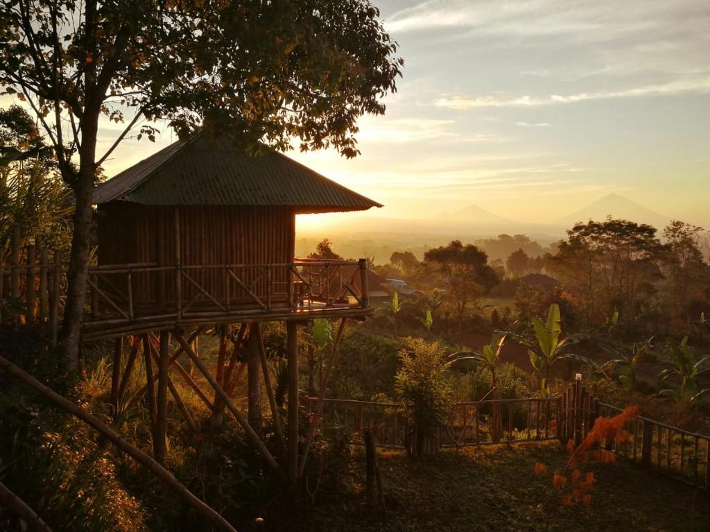 Bali Tree House Pelangi Bedugul Updated Na 2020 Prices