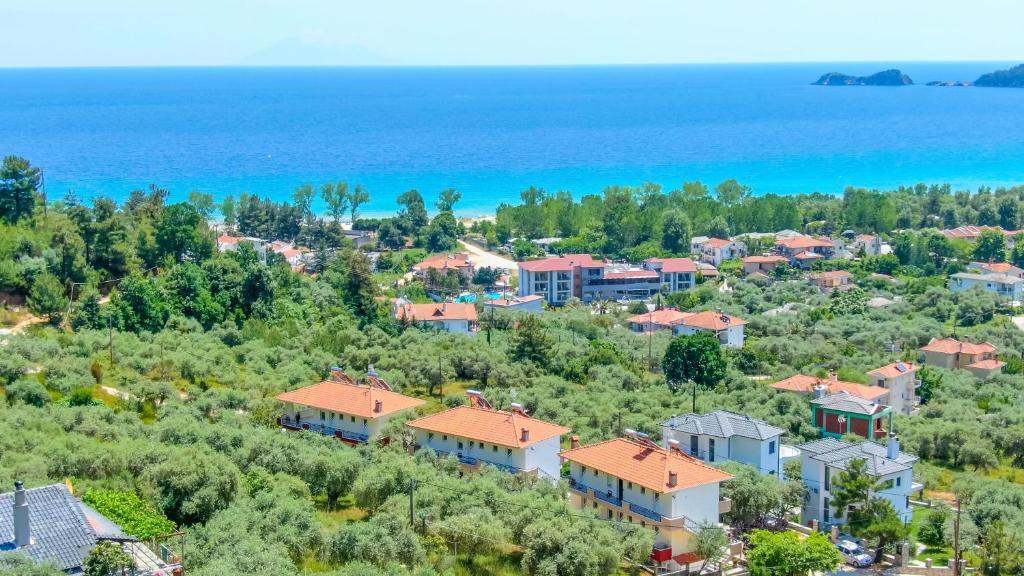 A bird's-eye view of Golden View Studios