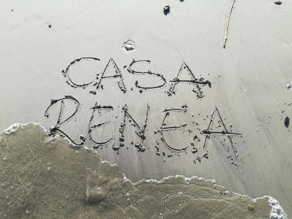 A bird's-eye view of Casa Renea