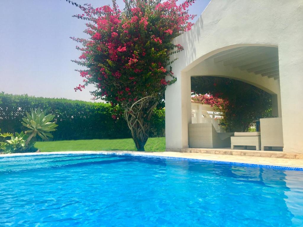 Villa Turquesa 3 Fuerteventura, Corralejo – Precios ...