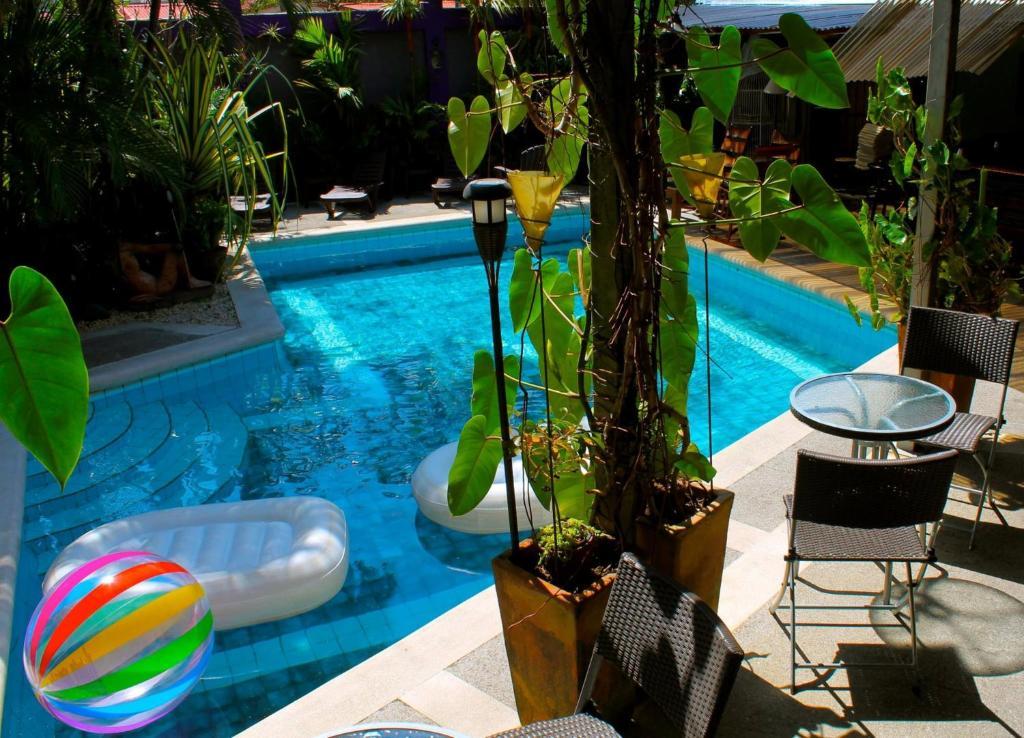 Piscina en o cerca de Colours Oasis Resort