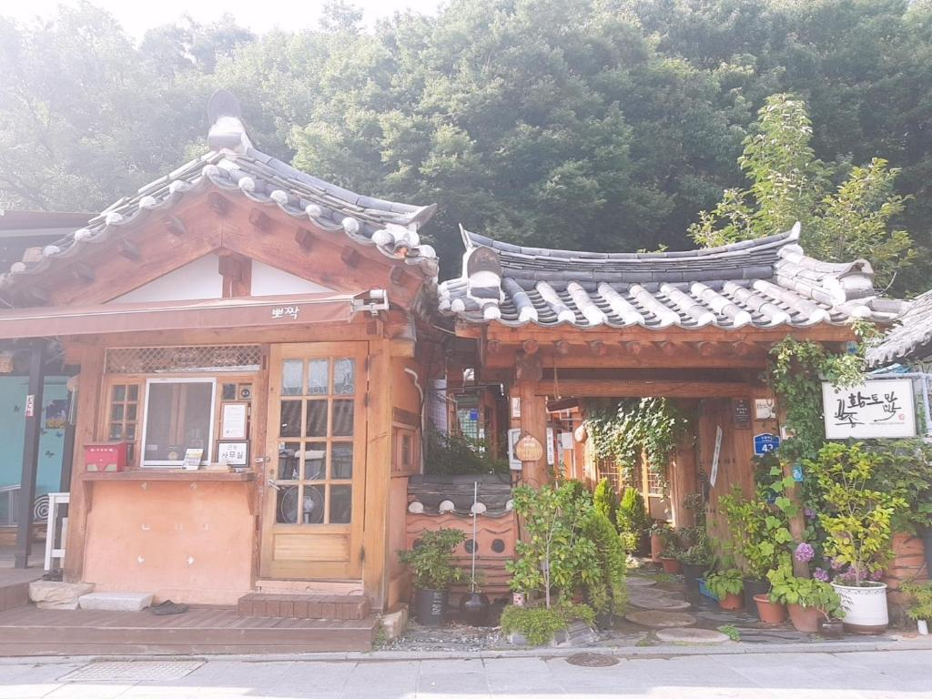 SEX AGENCY in Jeonju