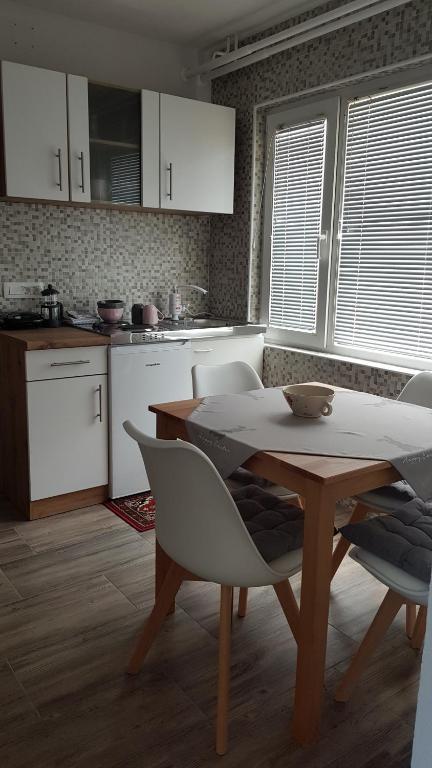 Kuhinja oz. manjša kuhinja v nastanitvi Apartma Cerknica
