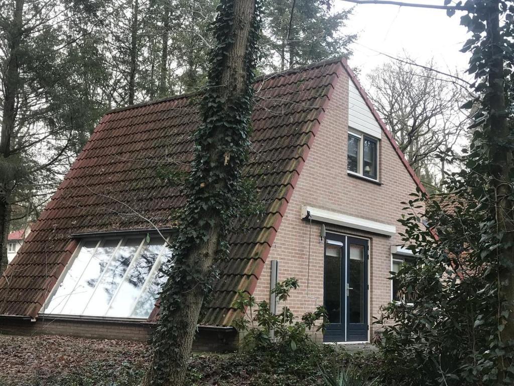 Apartments In Biddinghuizen Flevoland