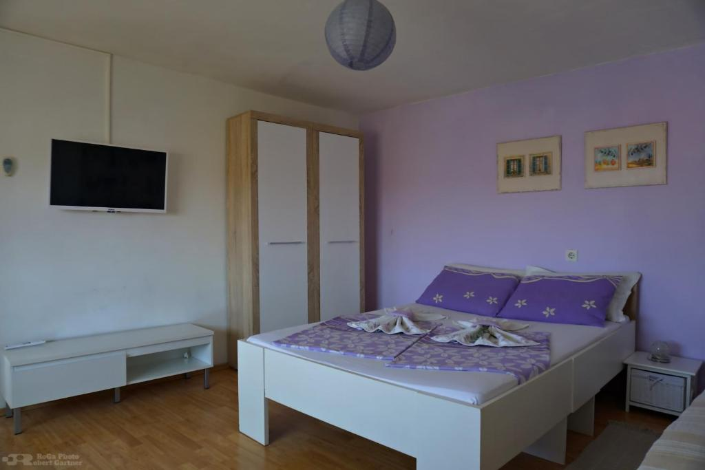 Hostel XXS