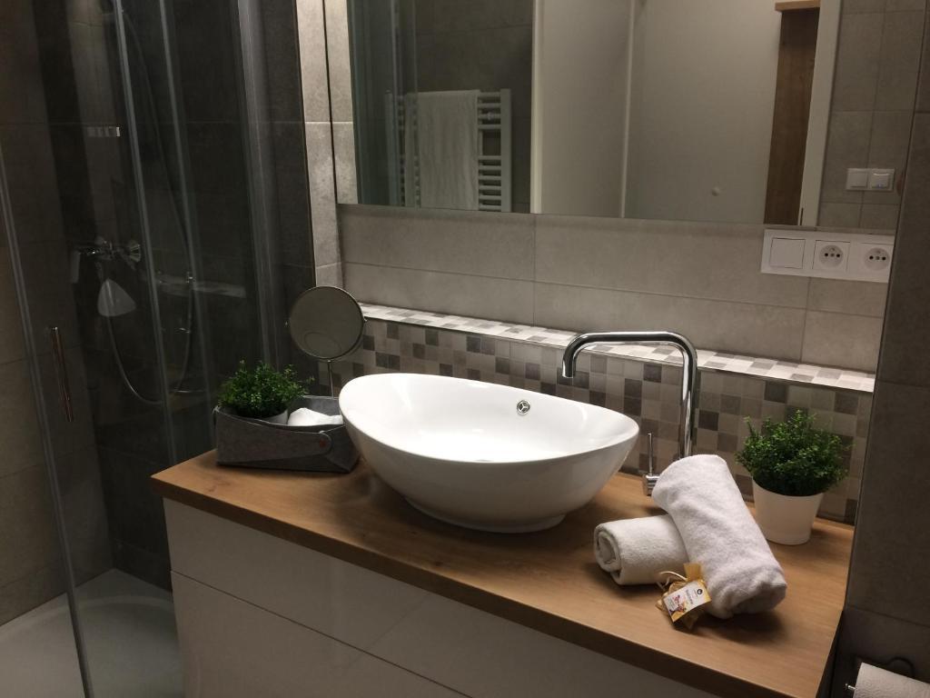 Koupelna v ubytování Apartmán Dara