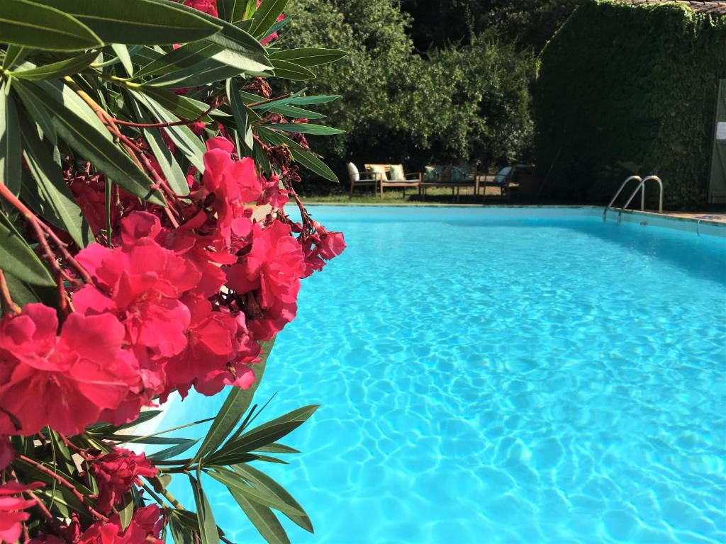 The swimming pool at or close to Villa Fontane Provence