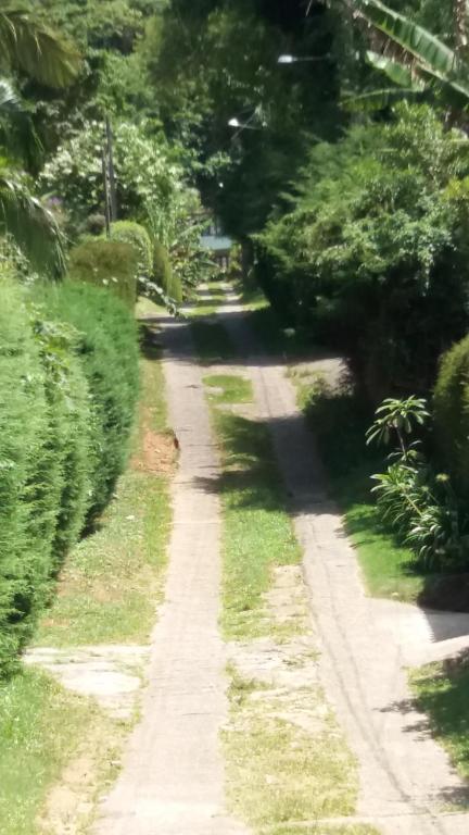A garden outside Casa de Montanha em S.Pedro