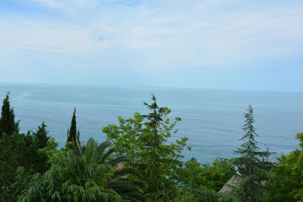 Общий вид на море или вид на море из гостевого дома