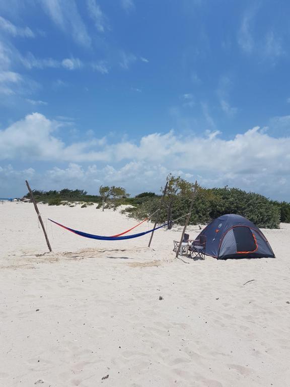 Camping Cancun Cancun Paivitetyt Vuoden 2020 Hinnat