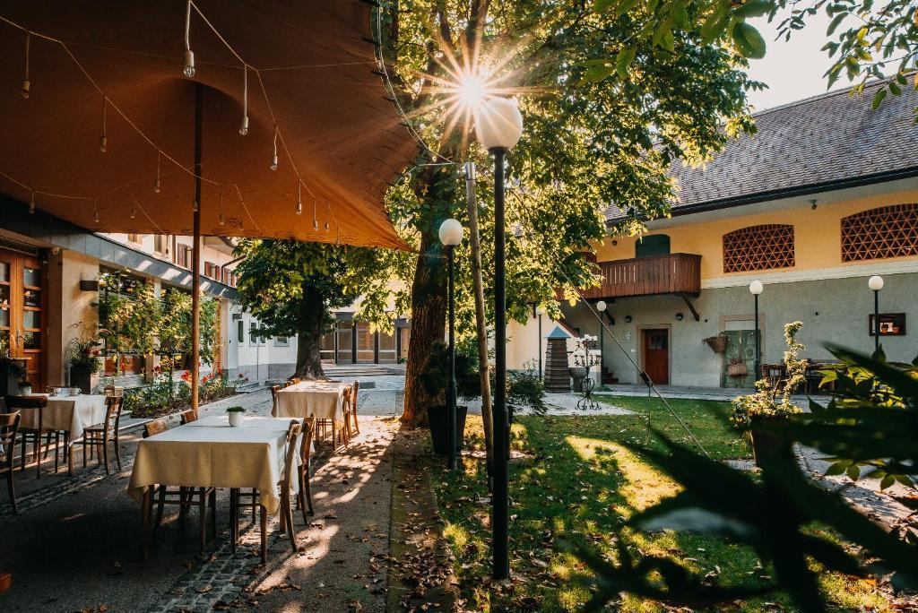 Patio o area all'aperto di Dvor Jezersek Brnik
