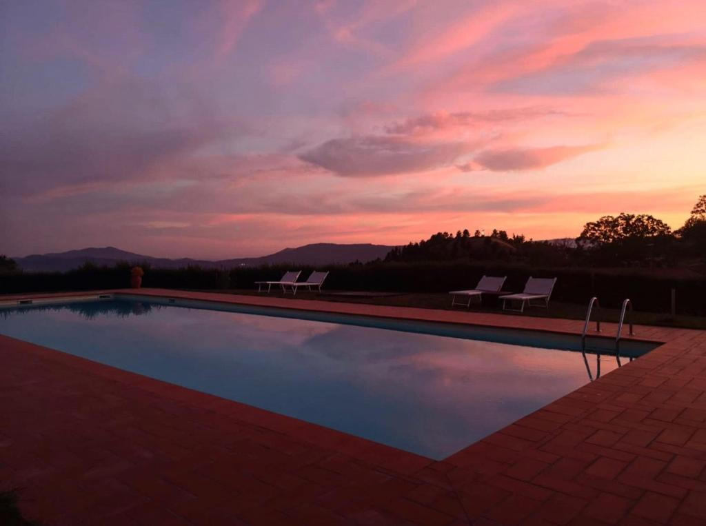The swimming pool at or near Podere Belvedere