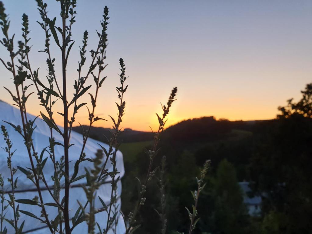 Blick auf den Sonnenuntergang/Sonnenaufgang von of luxury tent aus oder aus der Nähe