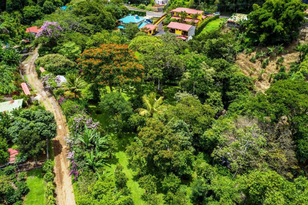 La Terraza Guest House Grecia Costa Rica Booking Com