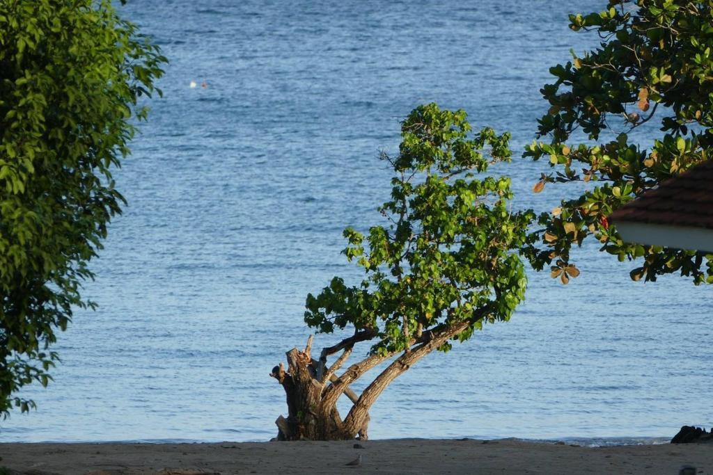 Residence Eden Village, Quartiers Anse à l'Âne, Martinique ...