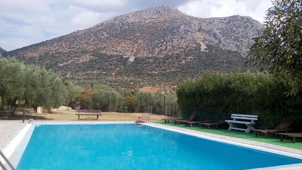 The swimming pool at or close to La Petite Planete