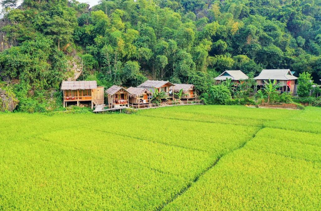 Little Mai Chau Homestay