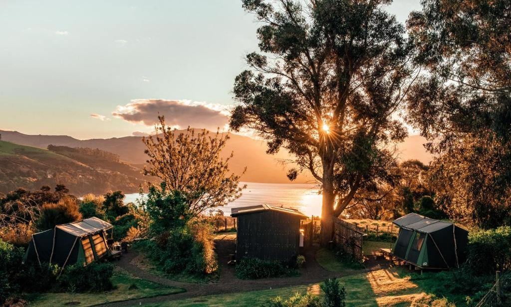 A bird's-eye view of Akaroa Glamping