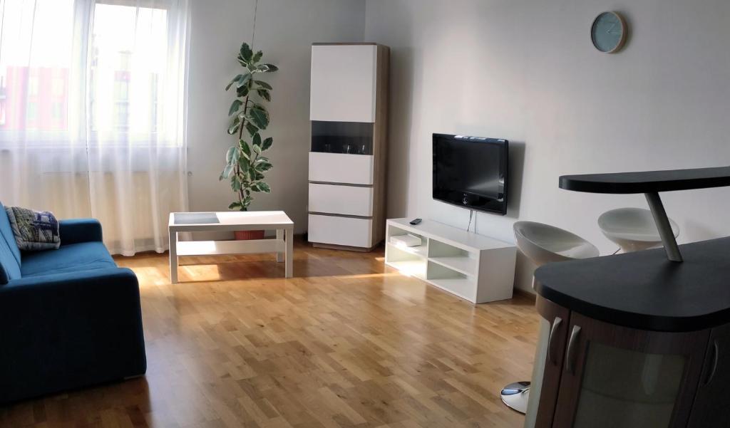 Μια τηλεόραση ή/και κέντρο ψυχαγωγίας στο Apartament Zalesie