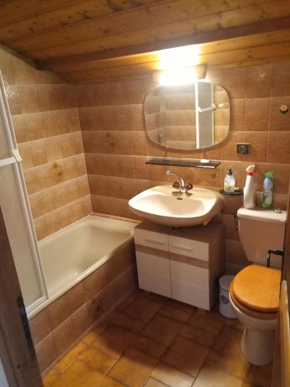 Appartement Studio pour vacances à la montagne . (France ...