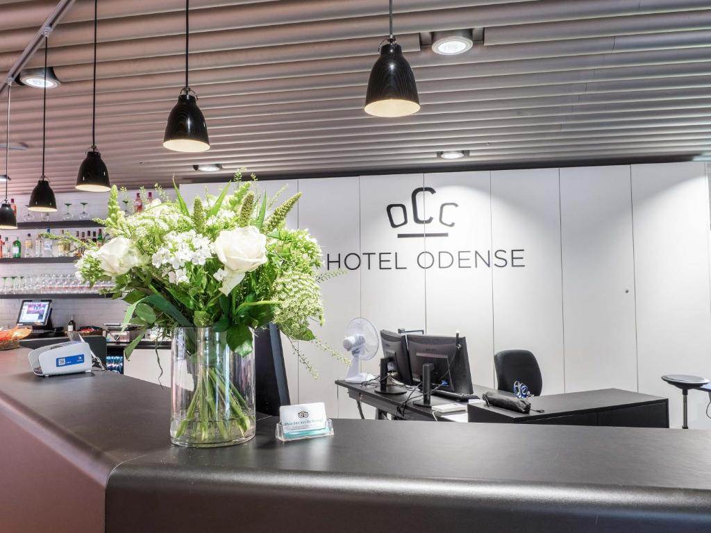 A kitchen or kitchenette at Hotel Odense